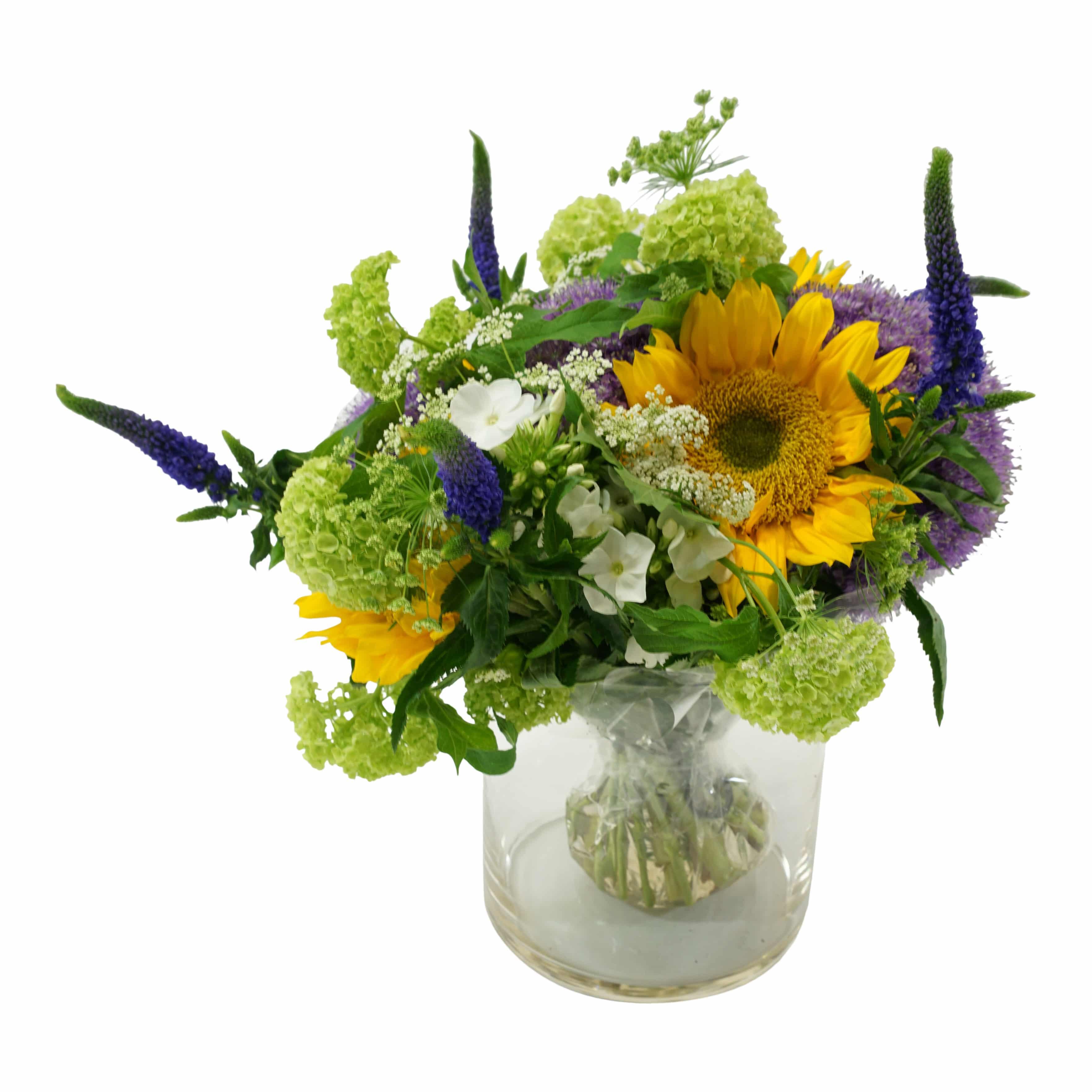 Lollipop flowers free delivery in dublin a dsc09490 izmirmasajfo